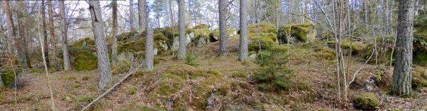 Stenig skogsterräng